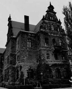 Gothic Aesthetic, Building Structure, Dark Places, Gothic Art, Barcelona Cathedral, Creepy, Black And White, Vampires, World