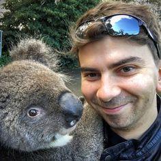 Search in Pics: SEO robots, Google fish tank & a koala
