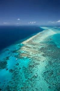 Great Barrier Reef Marine Park Queensland Australia