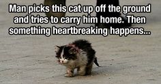 This is so sad, truly heartbreaking & does make you cry.