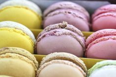 When in Paris, try these sweet meringue-based treats at Ladurée, a luxury bakery and sweets-maker famous for its double-decker macarons. Pastry School, Macarons, Cheesecake Brownies, Bread Cake, French Pastries, Best Dishes, Something Sweet, High Tea, Sweet Recipes