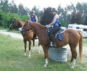 8 Tips That Can Help You Form A Bond With Your Horse
