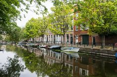 The Hague is a must-visit on your next trip to the Netherlands.