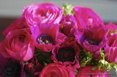 anemones and ranunculi XOXO