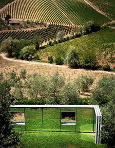 Daniel Buren's permanent installation Sulle vigne: punti di vista, 2001, at the Castello di Ama, Tuscany