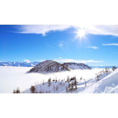 @magali_b Management, Mountains, Twitter, Travel, Instagram, Trips, Viajes, Traveling, Bergen