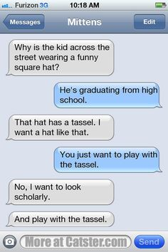 Texts from Mittens: The Graduation Cap Edition | Catster