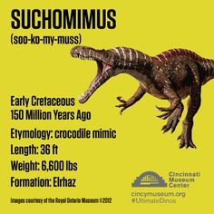Collect this #UltimateDinos Trading Card at the Exhibition
