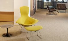 Yellow Upholstery on Bertoia Bird Chair. Introduced in Cato has achieved iconic status among upholstery textiles. Primarily constructed of wool, the exaggerated texture of this pattern recalls the hand weaving tradition. Green Furniture, Classic Furniture, Furniture Design, Florence Knoll, Upholstered Swivel Chairs, Chair And Ottoman, Patio Chair Cushions, Patio Chairs, Mesa Saarinen