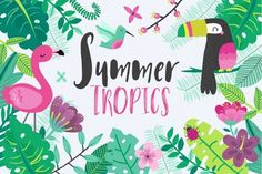 Tropical Summer Vector Set By DillyPeach Designs