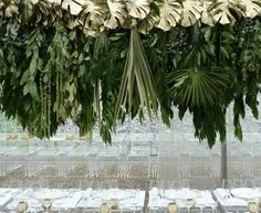 wedding style | HANGING tropical leaf opulence