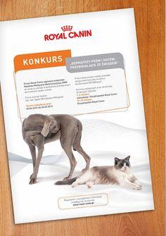 Royal Canin on Behance