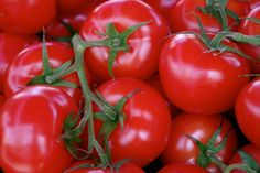Tomatoes are my kids fav! One Color, Colour, Vermillion Red, Red Images, Cafe Menu, Red Barns, My Favorite Color, Rainbow Colors, Delicious Food