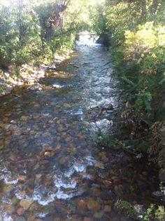 Rattlesnake creek Missoula, MT