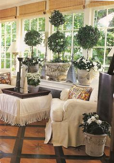 Topiaries..Mix up the containers that's what makes it so beautiful
