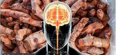 6 especies fantásticas que ayudan a detener la inflamación y mejorar la salud del cerebro