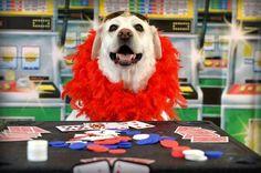 Mya is stylin' at A Closer Bond's Casino Day!