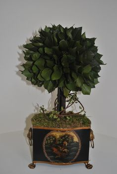 Single Lemon Leaf Topiary in Tole Container