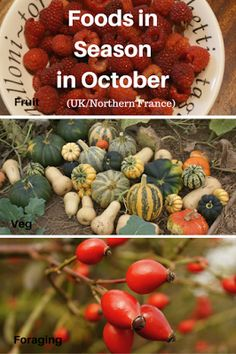 A Green and Rosie Life: Veg, Fruit and Foraged Foods in Season in October