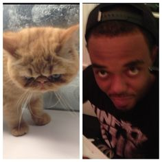 """""""@TerrenceReche and my cat Tuts are twins"""" - Justin"""