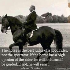 Nuno Oliveira - well-known classical dressage teacher and advocate Pretty Horses, Horse Love, Beautiful Horses, Inspirational Horse Quotes, Equestrian Quotes, Western Quotes, Equine Quotes, Equestrian Chic, Equestrian Problems