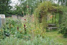 Amaranthes et roses trémières en petites taches rouges au potager, (c) Agnès Guillaumin, SNHF. Le Jardin des rêves, JP &  V Herbeth  Lauréats du concours Jardiner autrement 2011