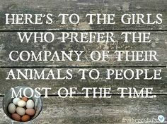 You only know this reality if you have chickens or other farm animals that require hay. Farm Quotes, Country Girl Quotes, Horse Quotes, Country Girls, Country Sayings, Country Living, Southern Girls, Southern Sayings, Southern Belle