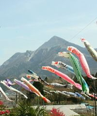 koinobori windsock. Make these in April or May out of toilet paper tubes.                 http://www.crayola.com/lesson-plans/breezy-windsock-lesson-plan/