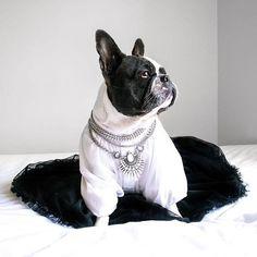 Art Deco Style Statement Necklace #dogs #cutedog #style #silvernecklace #statementnecklace - 23,90 @happinessboutique.com