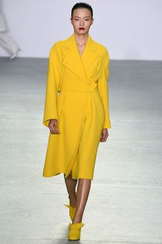 J. JS Lee Fall 2016 Ready-to-Wear Fashion Show  http://www.theclosetfeminist.ca/  http://www.vogue.com/fashion-shows/fall-2016-ready-to-wear/j-js-lee/slideshow/collection#9