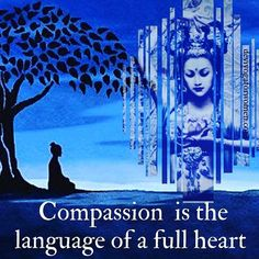 compassion is the language of a full heart