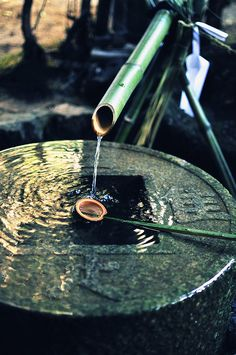 Shishi-odoshi (water feature at Japanese temple)