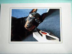 Girls Love Geeks  doberman photo card by BlackPlumArt on Etsy, $3.50