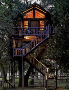 exterior-awesome-tree-hotel-motel-and-house-with-dark-brown-elegant-stairs-with-nice-glommy-and-warm-lighting-concept-the-choice-of-liveable-cool-tree-house-design