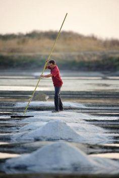 Insolite, les photos : Hervé Zarka récolte du sel le 18 juillet 2013 à l'Epine sur l'île de Noirmoutier