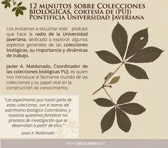 Los invitamos a que escuchen 12 minutos de radio Javeriana Estéreo 91.9 FM, esta vez dedicada a la importancia de las Colecciones Biológicas en Colombia: http://www.javeriana.edu.co/javerianaestereo/podcast/index.php?id=9810