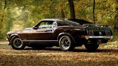 vehicles cars ford mustang boss spoiler wings wheels shine muscle old retro classic landscapes leaves trees forest autumn fall seasons roads street wallpaper background