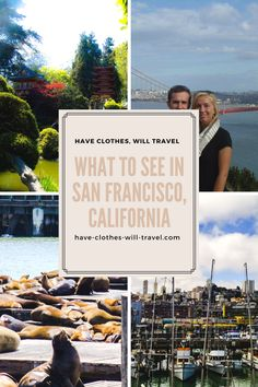 Cool things to see in San Francisco!