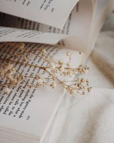 Trendy book photography pages pictures Ideas Flower Aesthetic, Aesthetic Photo, Aesthetic Pictures, Nature Aesthetic, Bed Aesthetic, Brown Aesthetic, Aesthetic Vintage, Cream Aesthetic, Aesthetic Pastel Wallpaper
