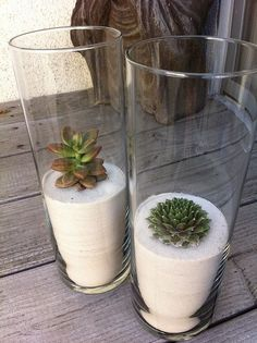 Plants Succulent In Sand 23 Trendy Ideas - Sukkulenten Deko deko vase Succulent Terrarium, Cacti And Succulents, Planting Succulents, Planting Flowers, Succulents In Containers, Air Plants, Garden Plants, Indoor Plants, Potted Plants