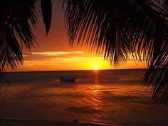 Roatan sunset.  My home for a few years... seeing this made me teary for the past...and for a cold Salva Vida.