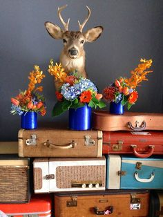 the client wanted orange and blue for an open house. styled with my collection of old luggage and record players. #floral #socialimprints