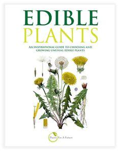 Edible Plants Book. Woodland/Forest/Organic Gardening