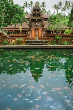 Tirta Empul Temple, Ubud, Bali, Indonesia A month here with a dear friend working and making jewelry. Amazing #loribonn