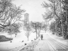 Snowed today. April 2nd.. . . . #snow #igers_novascotia #maritimes #igers_maritimes #igers_maritimes #explorecanada  #igers_halifax #sirsandfordflemingpark #winter #morewinter #walkabout #winterwalks #halifax #haligonia #halifaxnoise  #whistlewhileyouwalk #wind #winterwinds #toomuchwind #justgoshoot #mindymindy