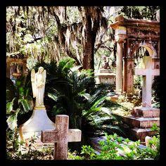 Visit Bonaventure Cemetery
