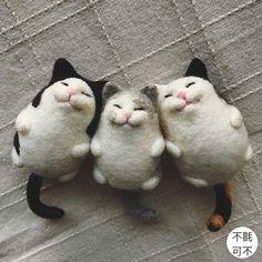 Oh mah gawd #feltedcat