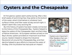 Informational Text for Distance Learning: Oysters and the Chesapeake Reading Lessons, Reading Activities, Math Lessons, Weather Quotes, Readers Notebook, Middle School English, Context Clues, Digital Text, Common Core Standards