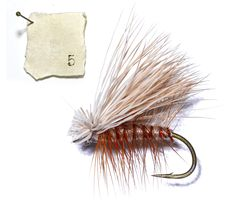 The 25 Greatest Flies of All Time