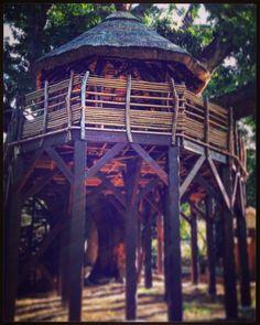 Je veux la même dans mon jardin !  Nice Hut  isn't it? But you can't sleep in it unfortunately !  #instagram #igers #instafrance #igersfrance #france #reunionisland #iledelareunion #landscape #paysage #gotoreunion #nature #hiking #trailrunning #discover #neverstopexploring #islandlife #reunionparadis #wanderlust #travel #scenery #team974 #974 #reuniontourisme #sunset #paradise #traveladdict #picoftheday by lagouglaz